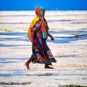 fine art print seaweed harvester zanzibar tanzania