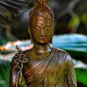 fine art print bronze buddha statue wat phra kaew chiang rai thailand